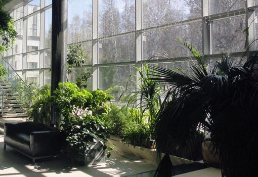 зимний сад в частном доме из алюминия, оранжерея из алюминия